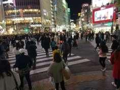 japan-tokyo-shibuya-crossing